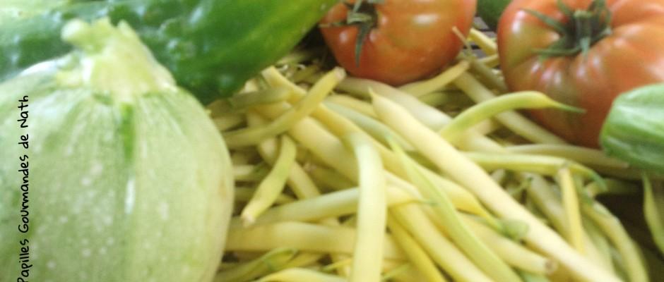 Légumes d'été du potager