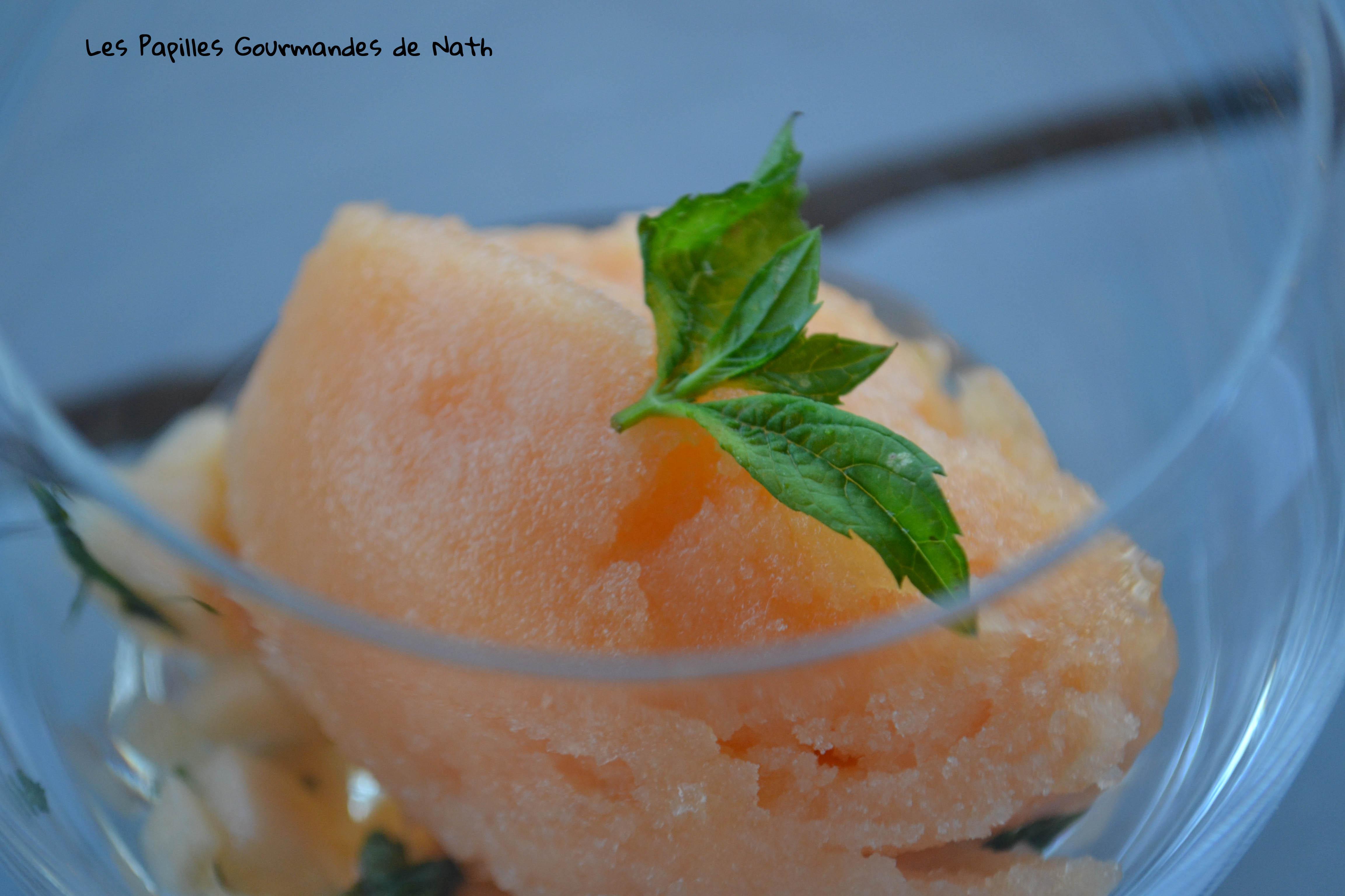 Sorbet-melon